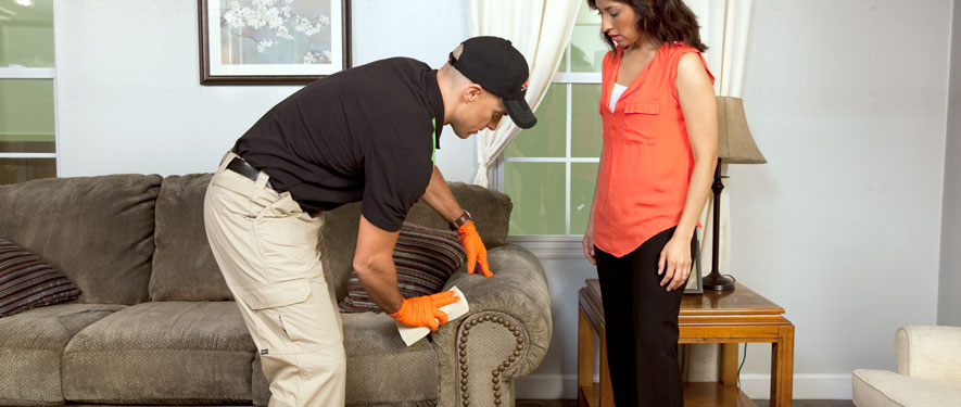 Round Rock, TX carpet upholstery cleaning